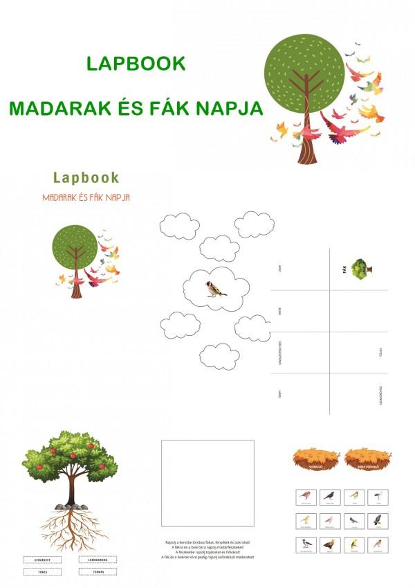 Madarak és Fák napja - Lapbook kisiskolásoknak