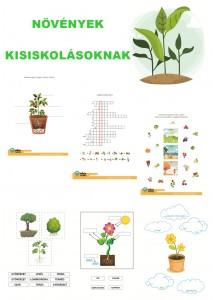 Növények - Kisiskolásoknak