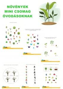 Növények - Mini csomag óvodásoknak
