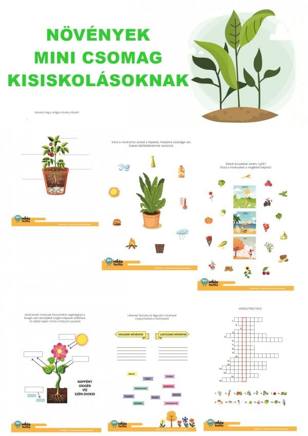 Növények - Mini csomag kisiskolásoknak